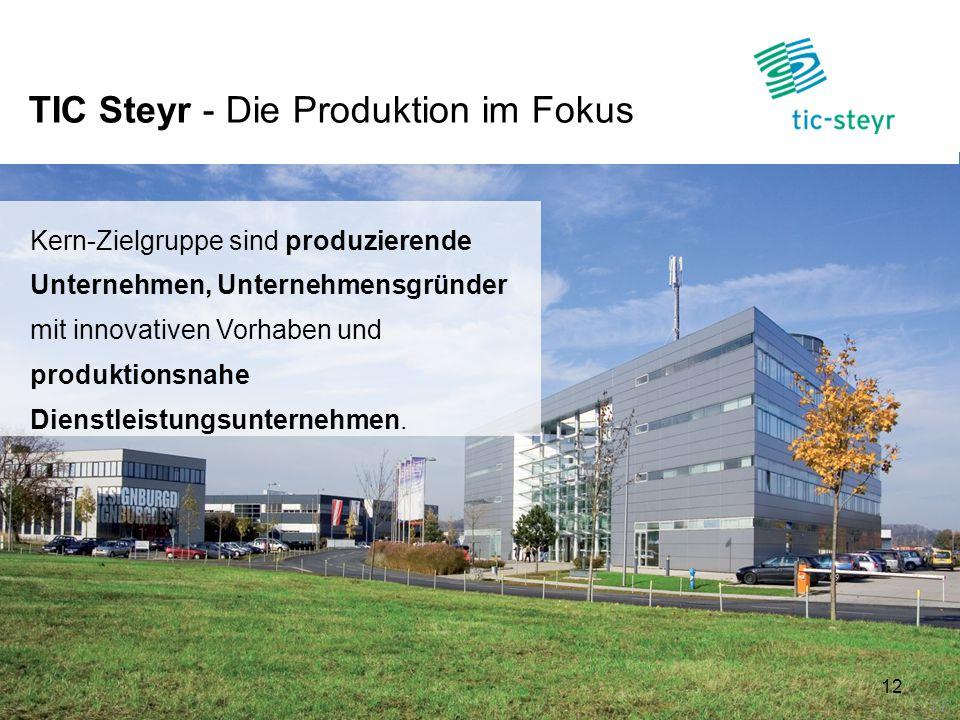 TIC Steyr - Die Produktion im Fokus 12 Kern-Zielgruppe sind produzierende Unternehmen, Unternehmensgründer mit innovativen Vorhaben und produktionsnah