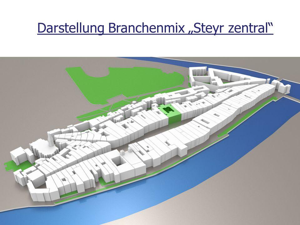 """Darstellung Branchenmix """"Steyr zentral"""""""
