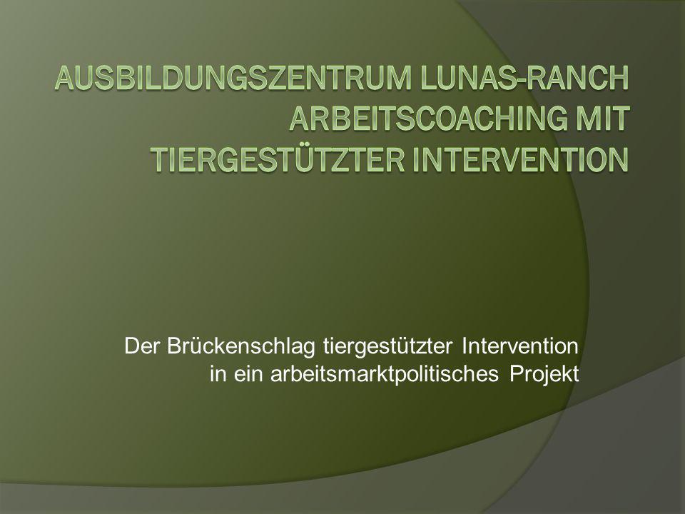 Der Brückenschlag tiergestützter Intervention in ein arbeitsmarktpolitisches Projekt