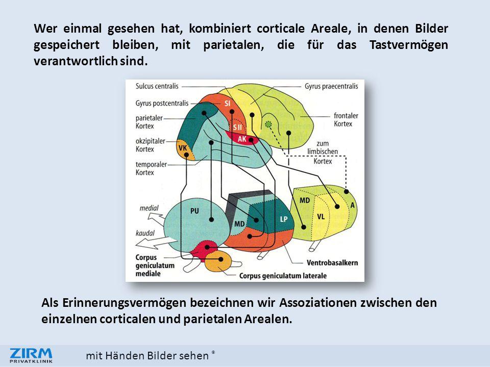 mit Händen Bilder sehen ® Wer einmal gesehen hat, kombiniert corticale Areale, in denen Bilder gespeichert bleiben, mit parietalen, die für das Tastve