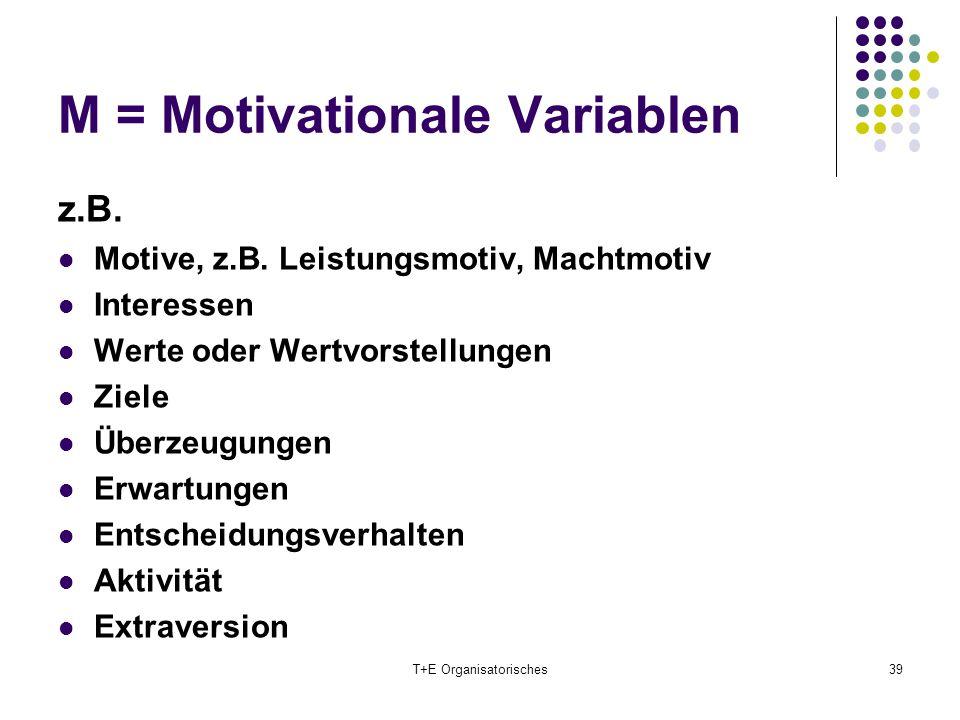 M = Motivationale Variablen T+E Organisatorisches39 z.B. Motive, z.B. Leistungsmotiv, Machtmotiv Interessen Werte oder Wertvorstellungen Ziele Überzeu