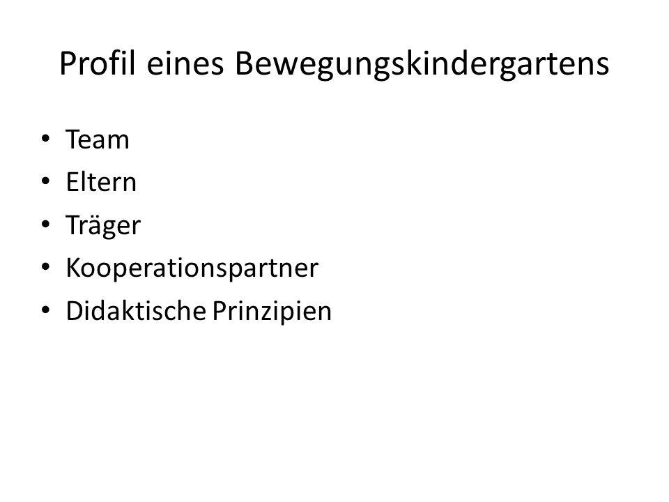 Profil eines Bewegungskindergartens Team Eltern Träger Kooperationspartner Didaktische Prinzipien