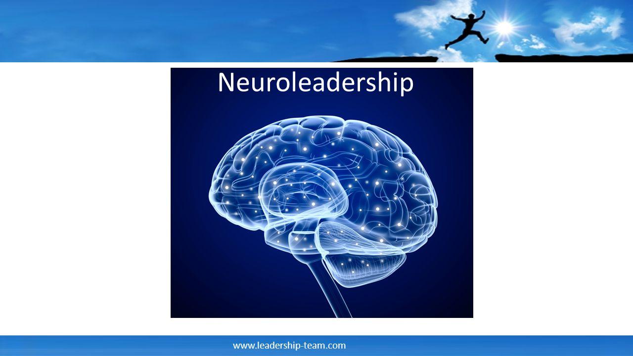 www.leadership-team.com Einige wichtige Fakten zum Gehirn