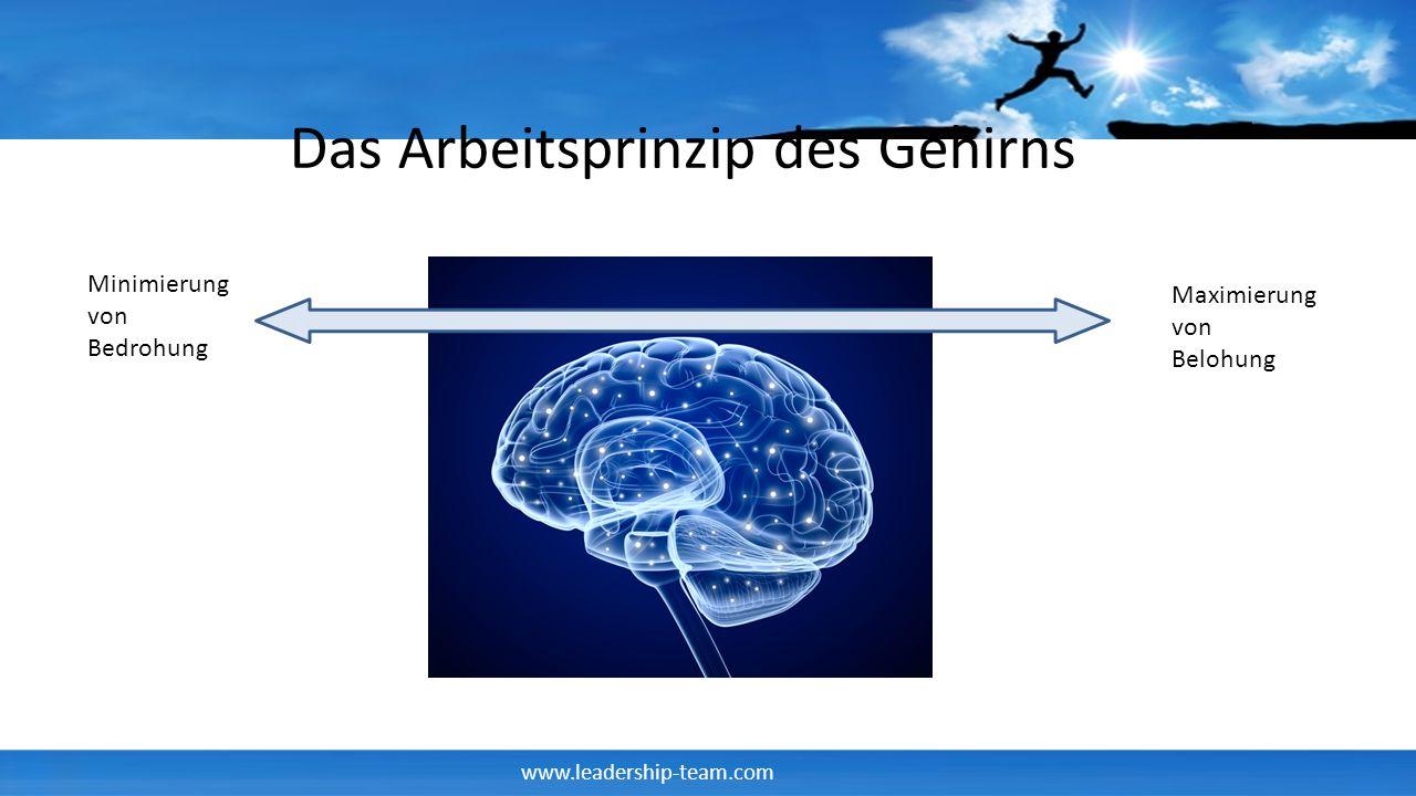 www.leadership-team.com Minimierung von Bedrohung Maximierung von Belohung Das Arbeitsprinzip des Gehirns