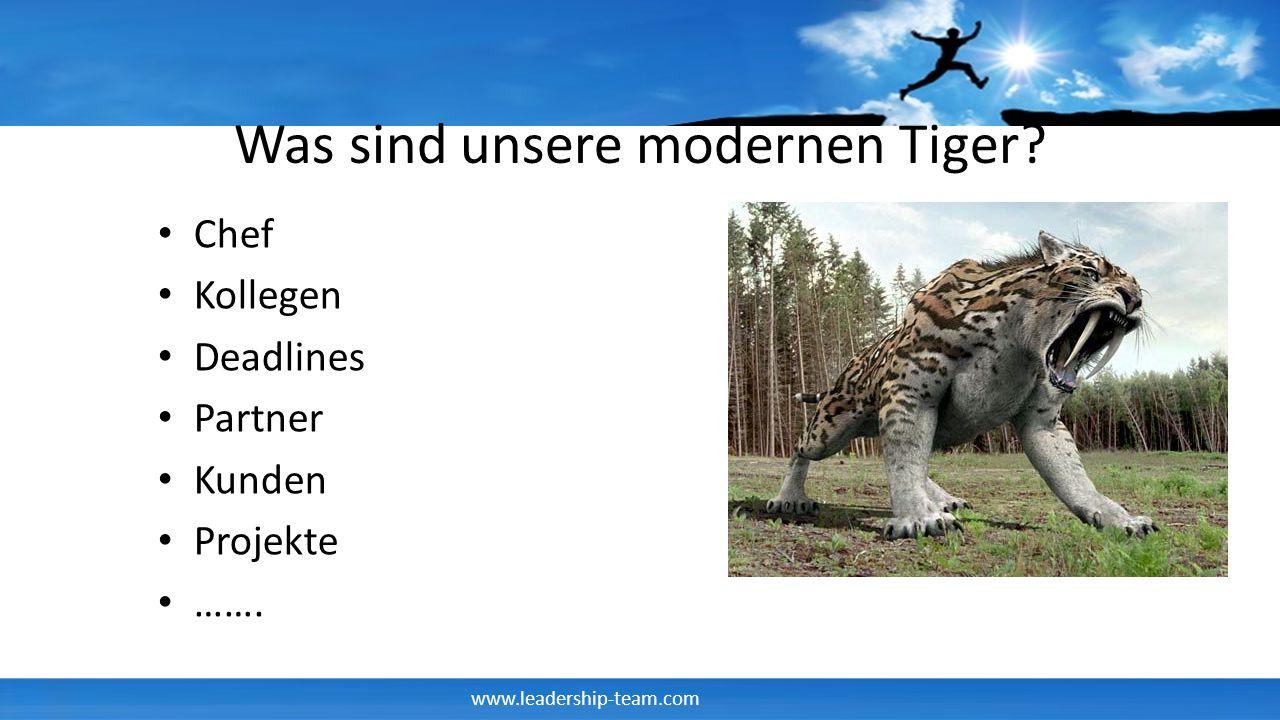 www.leadership-team.com Was sind unsere modernen Tiger? Chef Kollegen Deadlines Partner Kunden Projekte …….