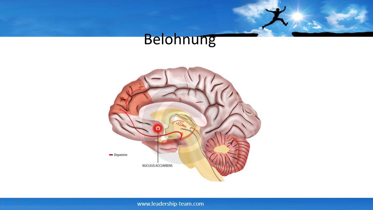 www.leadership-team.com Belohnung