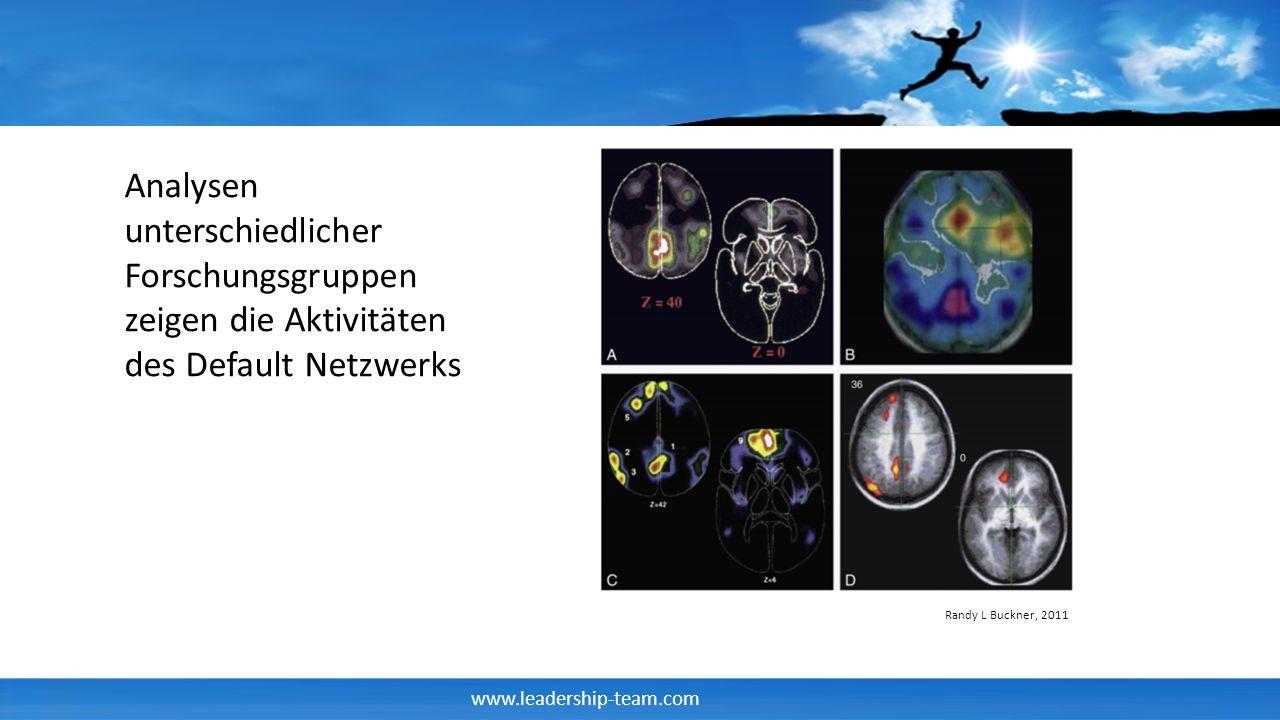 www.leadership-team.com Randy L Buckner, 2011 Analysen unterschiedlicher Forschungsgruppen zeigen die Aktivitäten des Default Netzwerks