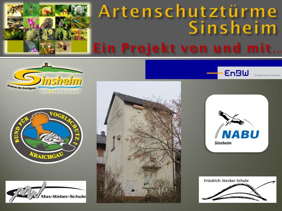 Friedrich- Hecker-Schule Ein Projekt von und mit…