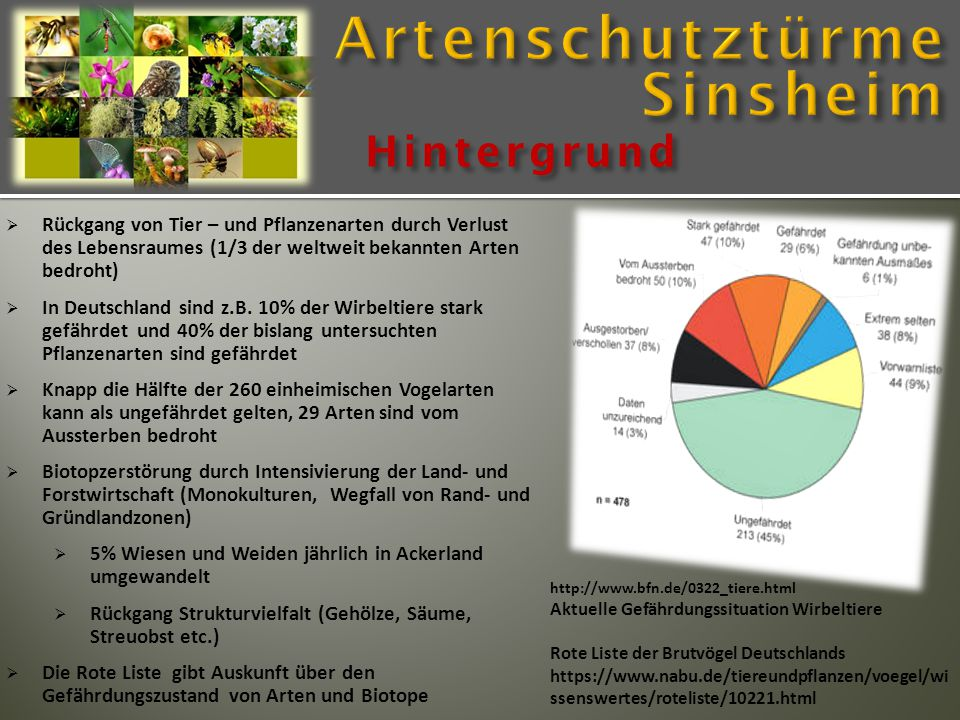 Hintergrund  Rückgang von Tier – und Pflanzenarten durch Verlust des Lebensraumes (1/3 der weltweit bekannten Arten bedroht)  In Deutschland sind z.B.