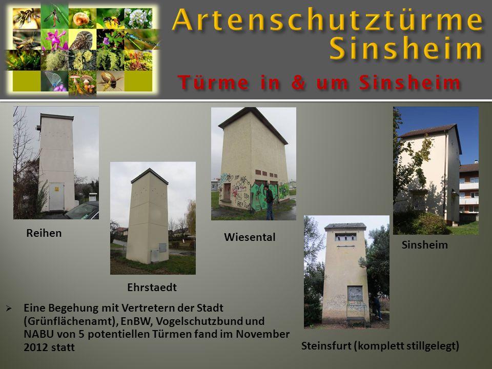 Türme in & um Sinsheim Reihen Sinsheim Steinsfurt (komplett stillgelegt) Wiesental Ehrstaedt  Eine Begehung mit Vertretern der Stadt (Grünflächenamt), EnBW, Vogelschutzbund und NABU von 5 potentiellen Türmen fand im November 2012 statt