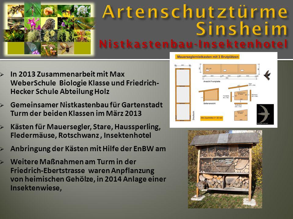 Nistkastenbau-Insektenhotel  In 2013 Zusammenarbeit mit Max WeberSchule Biologie Klasse und Friedrich- Hecker Schule Abteilung Holz  Gemeinsamer Nis