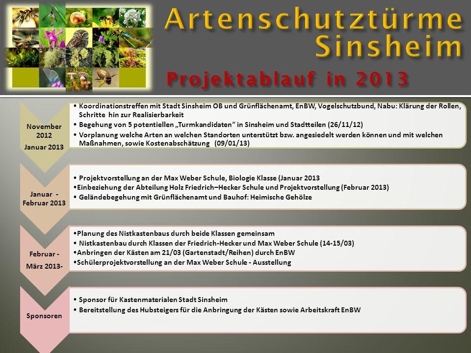 Projektablauf in 2013 November 2012 Januar 2013 Koordinationstreffen mit Stadt Sinsheim OB und Grünflächenamt, EnBW, Vogelschutzbund, Nabu: Klärung de