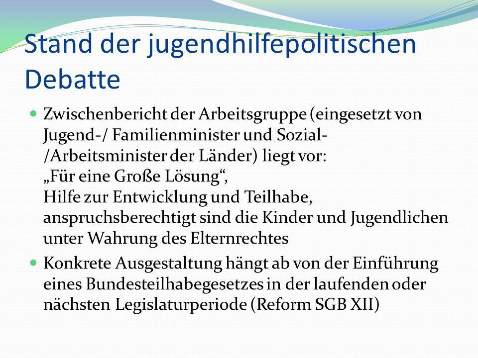 Stand der jugendhilfepolitischen Debatte Zwischenbericht der Arbeitsgruppe (eingesetzt von Jugend-/ Familienminister und Sozial- /Arbeitsminister der