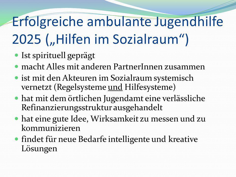 """Erfolgreiche ambulante Jugendhilfe 2025 (""""Hilfen im Sozialraum"""") Ist spirituell geprägt macht Alles mit anderen PartnerInnen zusammen ist mit den Akte"""