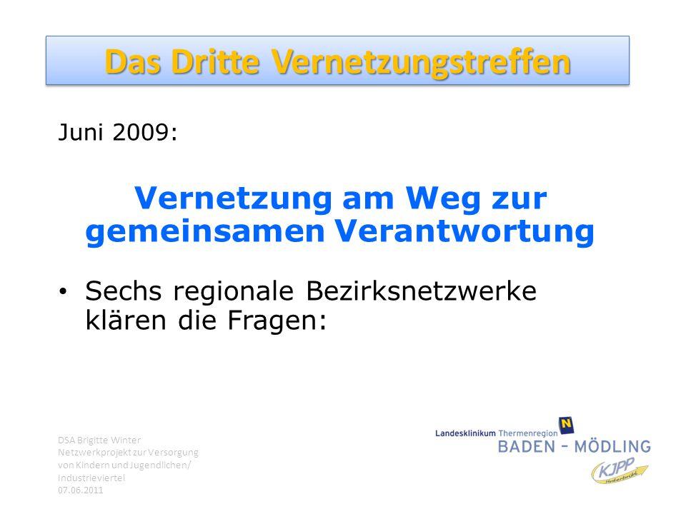 Das Dritte Vernetzungstreffen Juni 2009: Vernetzung am Weg zur gemeinsamen Verantwortung Sechs regionale Bezirksnetzwerke klären die Fragen: DSA Brigi