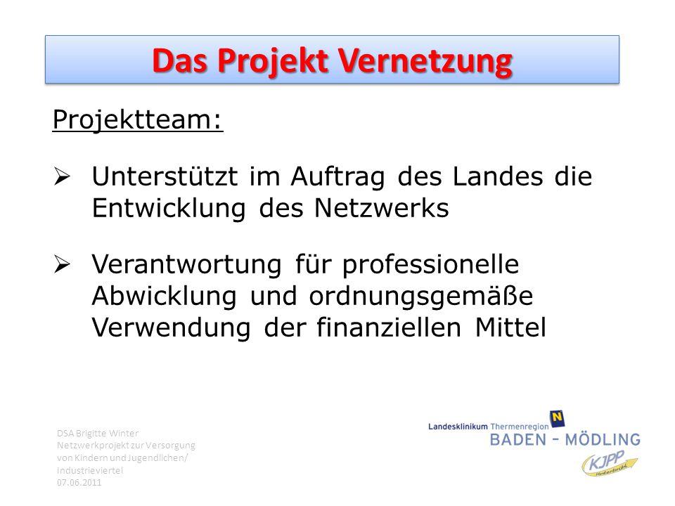 Das Projekt Vernetzung Projektteam:  Unterstützt im Auftrag des Landes die Entwicklung des Netzwerks  Verantwortung für professionelle Abwicklung un