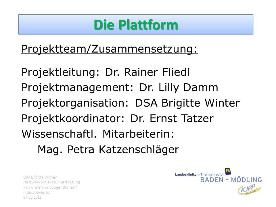 Die Plattform Projektteam/Zusammensetzung: Projektleitung: Dr. Rainer Fliedl Projektmanagement: Dr. Lilly Damm Projektorganisation: DSA Brigitte Winte