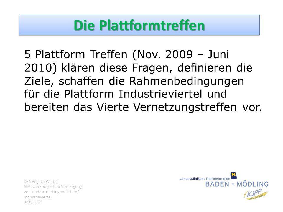 Die Plattformtreffen 5 Plattform Treffen (Nov. 2009 – Juni 2010) klären diese Fragen, definieren die Ziele, schaffen die Rahmenbedingungen für die Pla