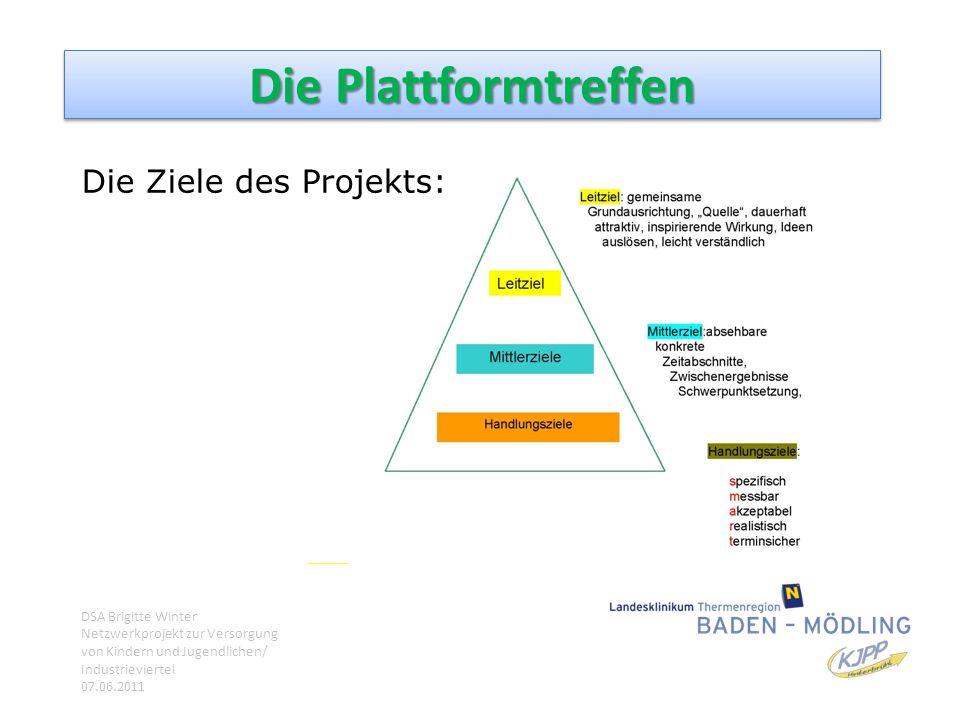 Die Plattformtreffen Die Ziele des Projekts: DSA Brigitte Winter Netzwerkprojekt zur Versorgung von Kindern und Jugendlichen/ Industrieviertel 07.06.2