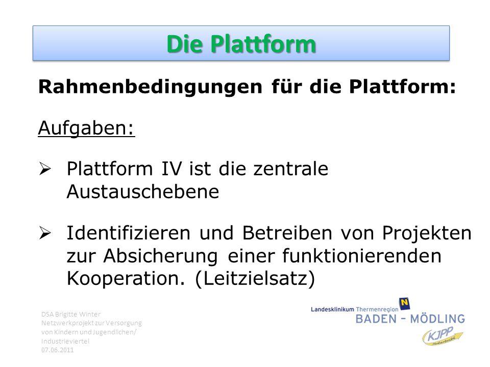 Die Plattform Rahmenbedingungen für die Plattform: Aufgaben:  Plattform IV ist die zentrale Austauschebene  Identifizieren und Betreiben von Projekt