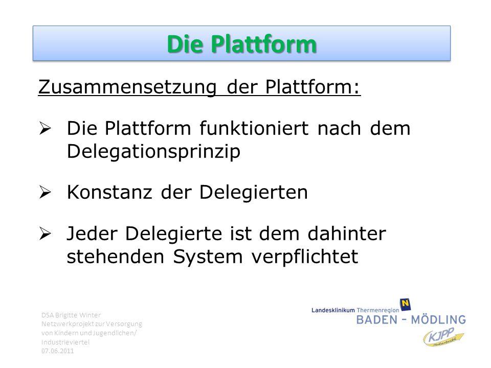 Die Plattform Zusammensetzung der Plattform:  Die Plattform funktioniert nach dem Delegationsprinzip  Konstanz der Delegierten  Jeder Delegierte is