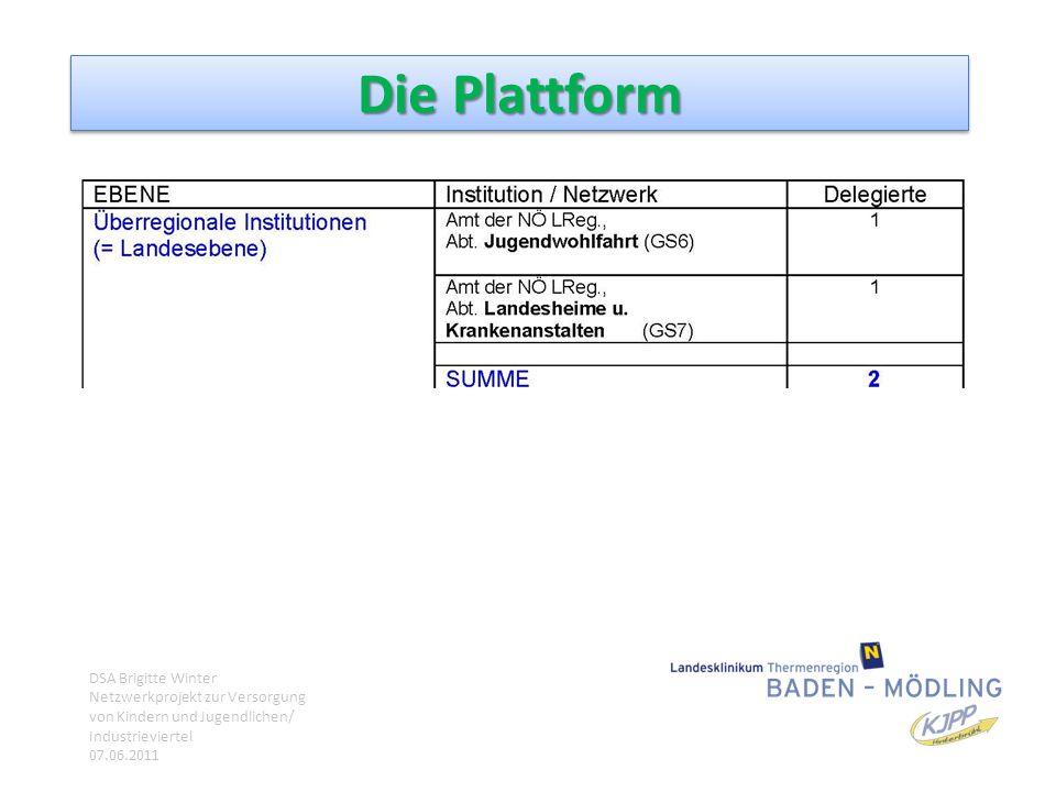 Die Plattform DSA Brigitte Winter Netzwerkprojekt zur Versorgung von Kindern und Jugendlichen/ Industrieviertel 07.06.2011