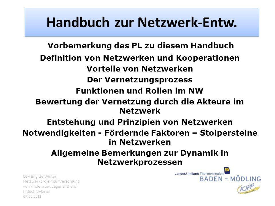 Handbuch zur Netzwerk-Entw. Vorbemerkung des PL zu diesem Handbuch Definition von Netzwerken und Kooperationen Vorteile von Netzwerken Der Vernetzungs