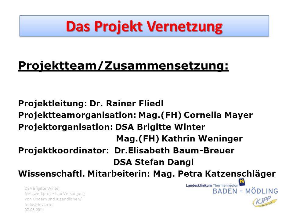Das Projekt Vernetzung Projektteam/Zusammensetzung: Projektleitung: Dr. Rainer Fliedl Projektteamorganisation: Mag.(FH) Cornelia Mayer Projektorganisa