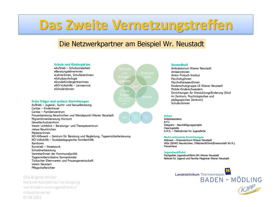 Das Zweite Vernetzungstreffen DSA Brigitte Winter Netzwerkprojekt zur Versorgung von Kindern und Jugendlichen/ Industrieviertel 07.06.2011