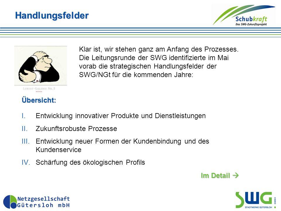Handlungsfelder I.Entwicklung innovativer Produkte und Dienstleistungen II.Zukunftsrobuste Prozesse III.Entwicklung neuer Formen der Kundenbindung und