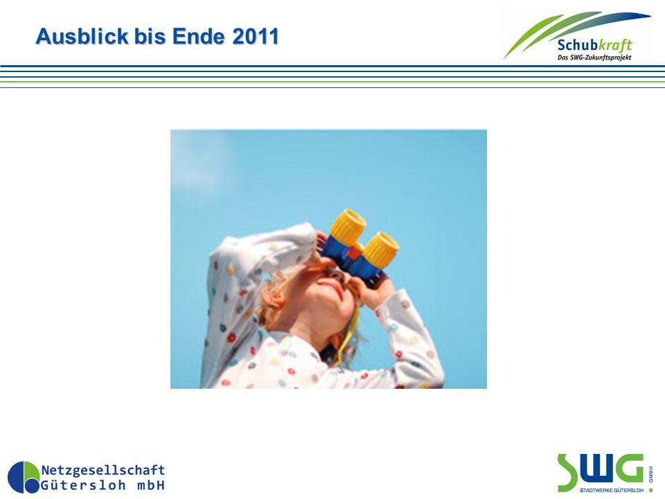 Ausblick bis Ende 2011