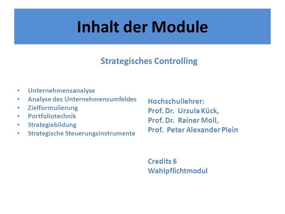 Inhalt der Module Unternehmensanalyse Analyse des Unternehmensumfeldes Zielformulierung Portfoliotechnik Strategiebildung Strategische Steuerungsinstrumente Hochschullehrer: Prof.