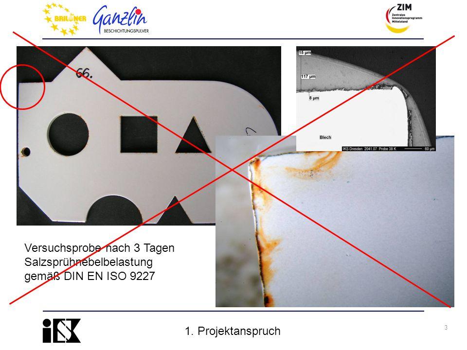 3 Versuchsprobe nach 3 Tagen Salzsprühnebelbelastung gemäß DIN EN ISO 9227 1. Projektanspruch