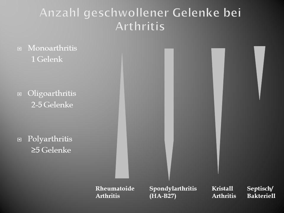  Monoarthritis 1 Gelenk  Oligoarthritis 2-5 Gelenke  Polyarthritis ≥5 Gelenke Rheumatoide Arthritis Spondylarthritis (HA-B27) Kristall Arthritis Se