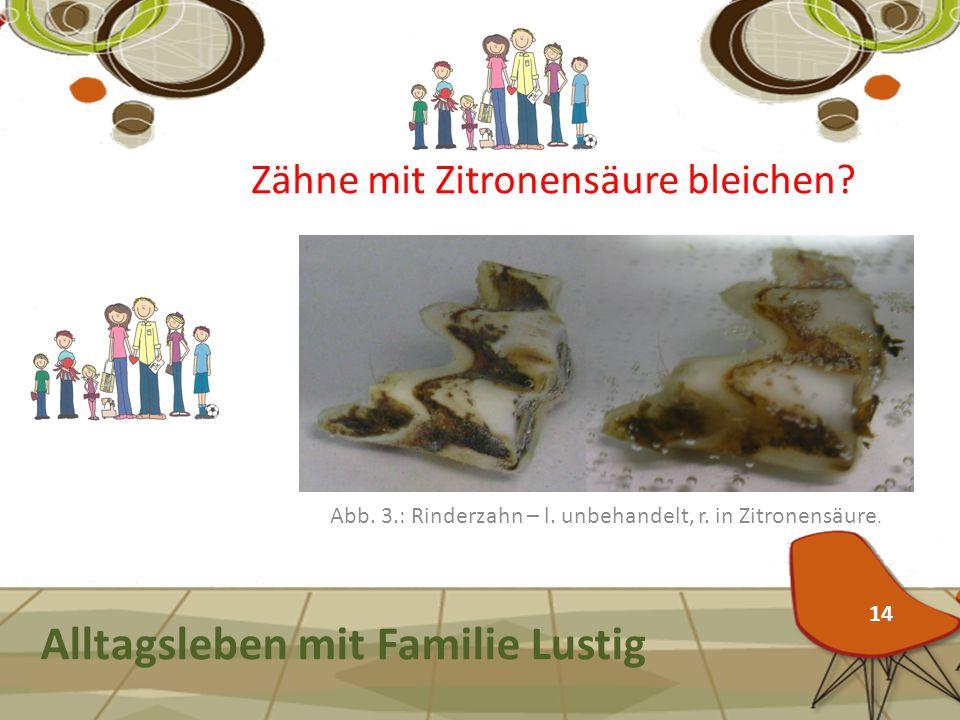 Alltagsleben mit Familie Lustig Abb. 3.: Rinderzahn – l. unbehandelt, r. in Zitronensäure. 14 Zähne mit Zitronensäure bleichen?