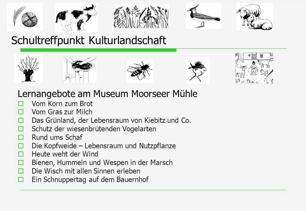 Schultreffpunkt Kulturlandschaft Lernangebote am Museum Moorseer Mühle  Vom Korn zum Brot  Vom Gras zur Milch  Das Grünland, der Lebensraum von Kiebitz und Co.