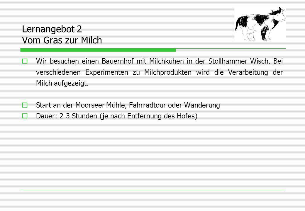 Lernangebot 2 Vom Gras zur Milch  Wir besuchen einen Bauernhof mit Milchkühen in der Stollhammer Wisch.