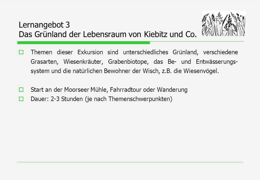 Lernangebot 4 Schutz der wiesenbrütenden Vogelarten  Heimische Wiesenvögel: Kiebitz, Rotschenkel und Uferschnepfe lernen wir in ihrem Lebensraum kennen.