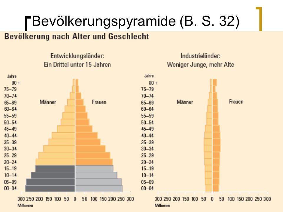 Bevölkerungspyramide (B. S. 32)