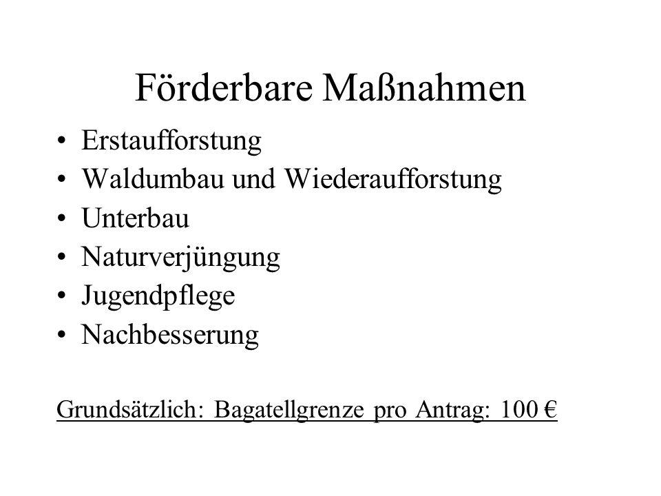Neuerungen bei der waldbaulichen Förderung WALDFÖPR 2007 Erstaufforstung landwirtschaftlicher Flächen nach Anlegungskosten und 5-jähriger Pflegeprämie Auf nicht landwirtschaftlichen Flächen nur Anlegungskosten Gliederung der Förderhöhe nach 3 Baumartengruppen Nadelholz (incl.