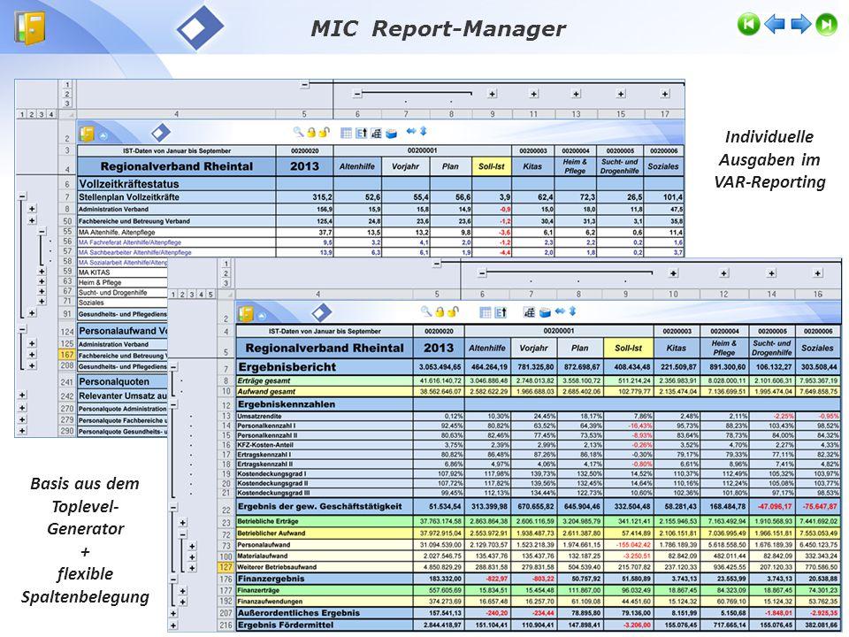 Individuelle Ausgaben im VAR-Reporting Basis aus dem Toplevel- Generator + flexible Spaltenbelegung MIC Report-Manager