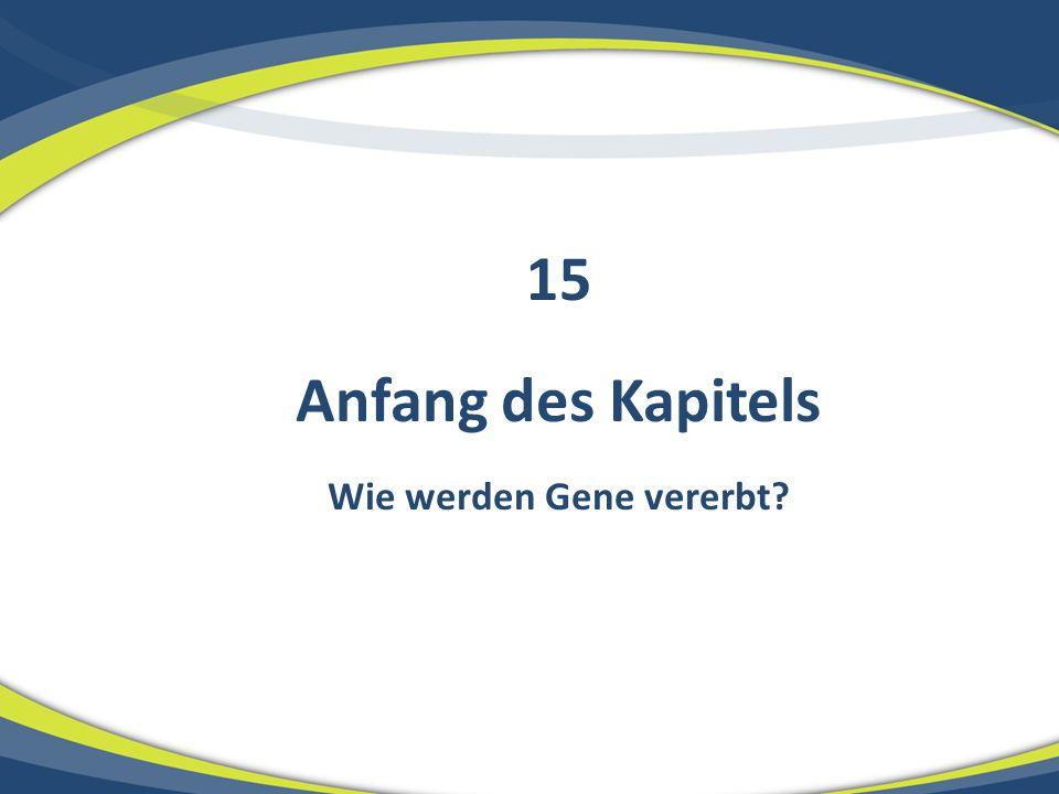 Anfang des Kapitels Wie werden Gene vererbt? 15