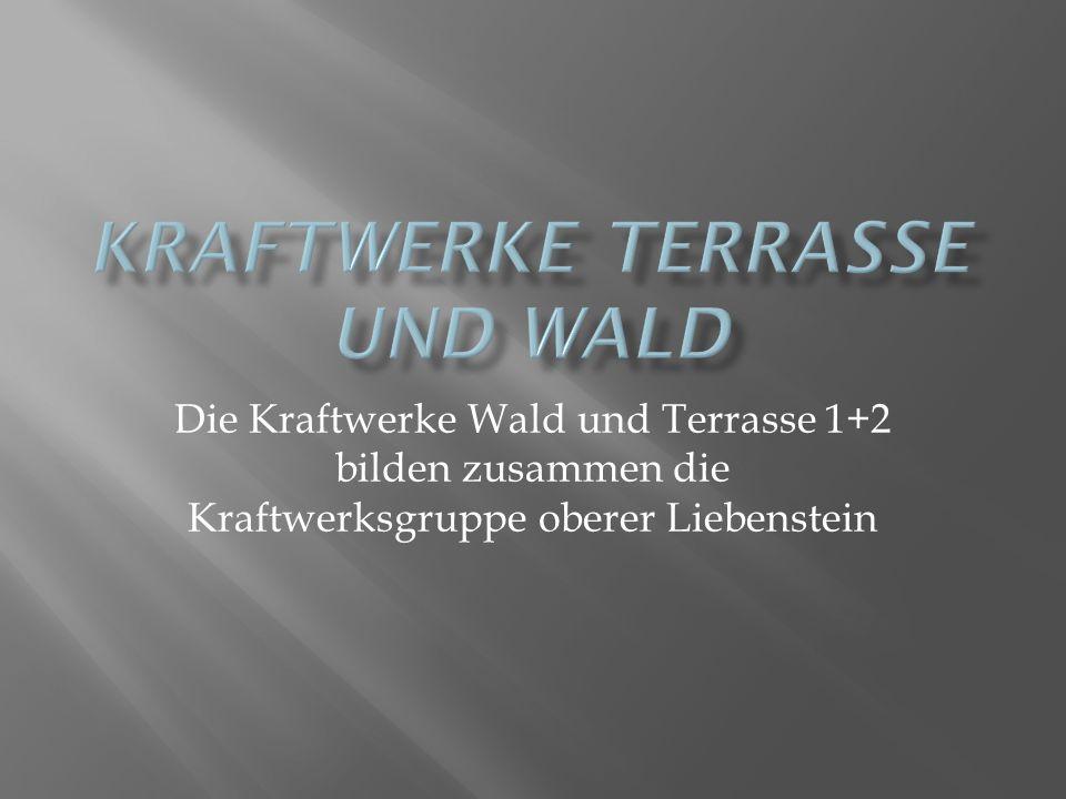 Die Kraftwerke Wald und Terrasse 1+2 bilden zusammen die Kraftwerksgruppe oberer Liebenstein