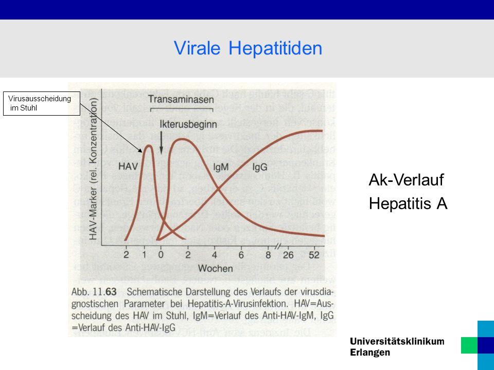 Ak-Verlauf Hepatitis A Virale Hepatitiden Virusausscheidung im Stuhl