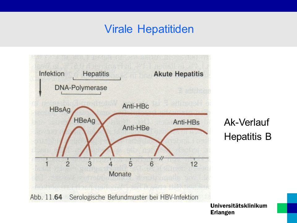 Ak-Verlauf Hepatitis B Virale Hepatitiden