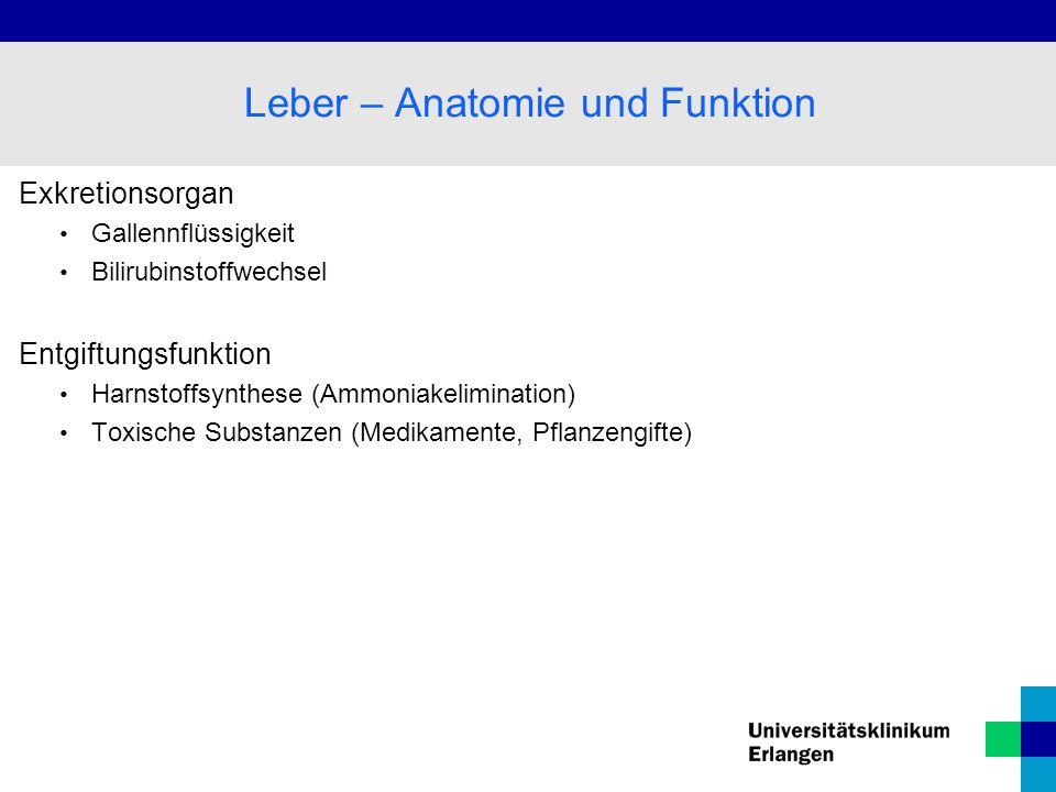 Exkretionsorgan Gallennflüssigkeit Bilirubinstoffwechsel Entgiftungsfunktion Harnstoffsynthese (Ammoniakelimination) Toxische Substanzen (Medikamente,