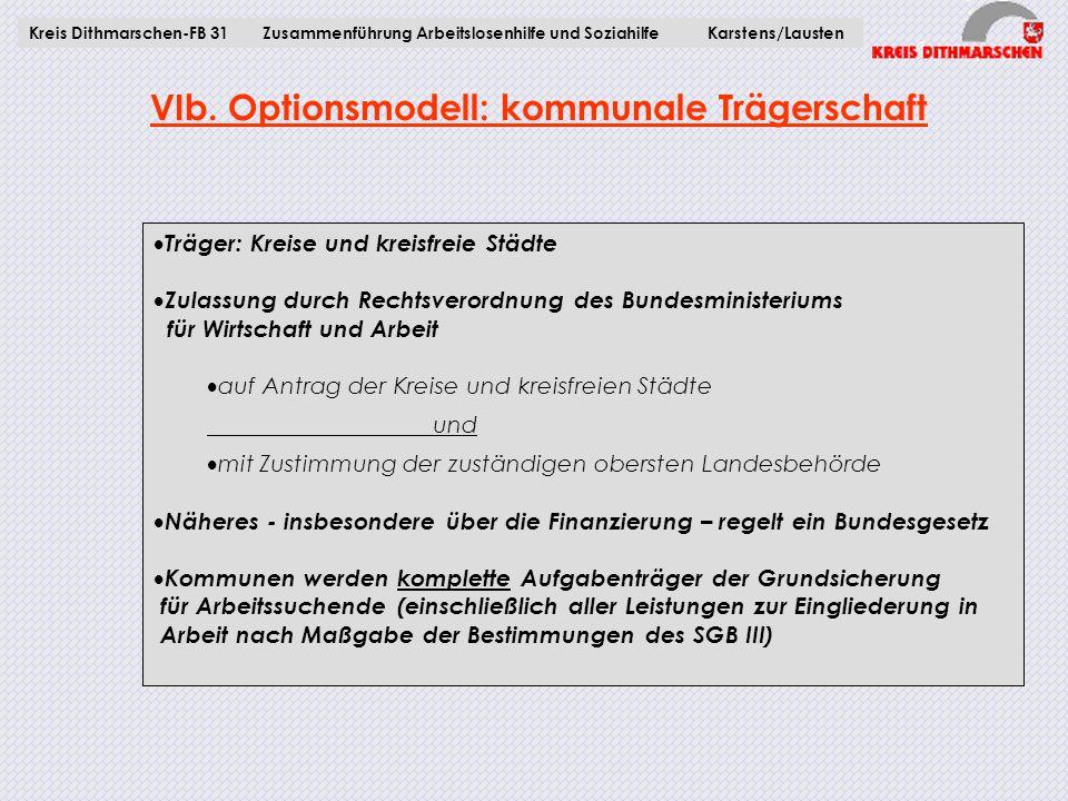 VIb. Optionsmodell: kommunale Trägerschaft  Träger: Kreise und kreisfreie Städte  Zulassung durch Rechtsverordnung des Bundesministeriums für Wirtsc