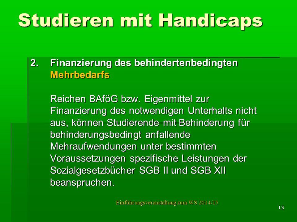 Studieren mit Handicaps 2.Finanzierung des behindertenbedingten Mehrbedarfs Mehrbedarfs Reichen BAföG bzw. Eigenmittel zur Finanzierung des notwendige