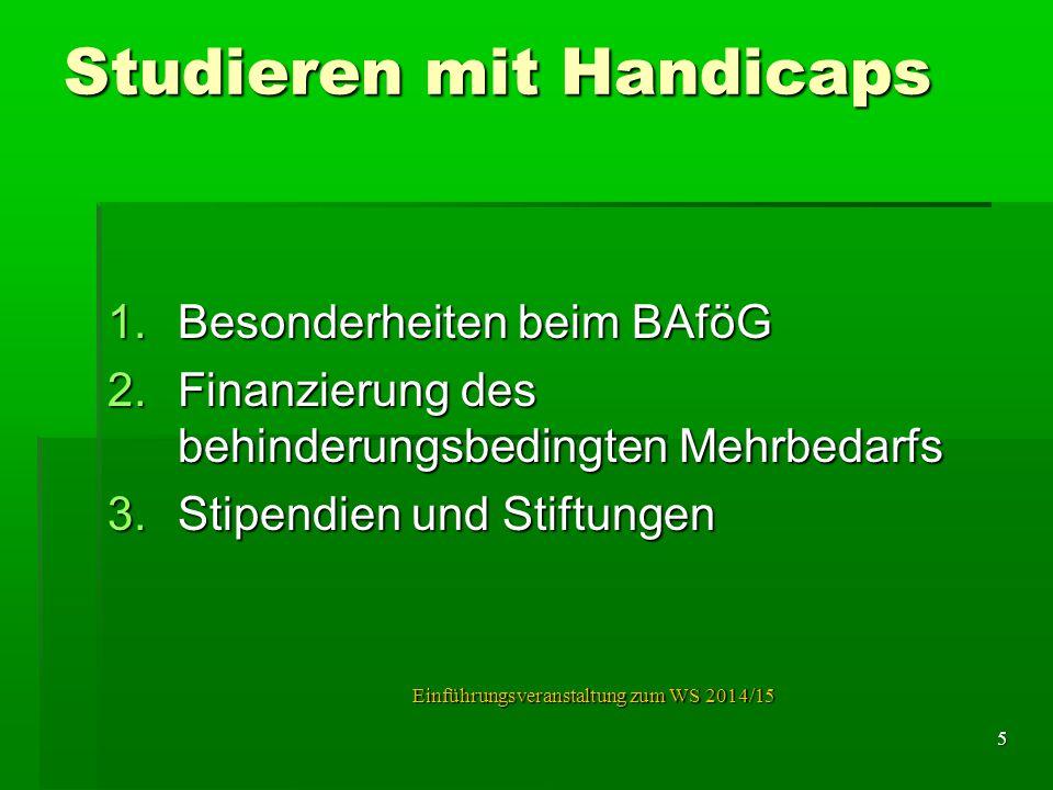 Studieren mit Handicaps 1.Besonderheiten beim BAföG 2.Finanzierung des behinderungsbedingten Mehrbedarfs 3.Stipendien und Stiftungen Einführungsverans