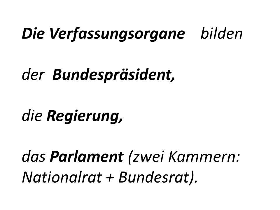 Die Verfassungsorgane bilden der Bundespräsident, die Regierung, das Parlament (zwei Kammern: Nationalrat + Bundesrat).